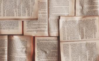 Litteraturanmelder søges